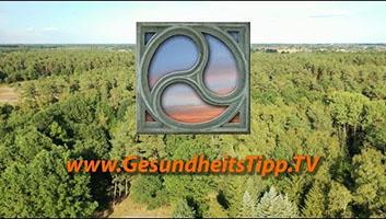Wald von oben mit GesundheitsTipp.TV-Logo